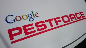 google pestforce