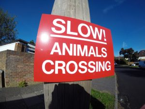 SLOW! ANIMALS CROSSING, Sign