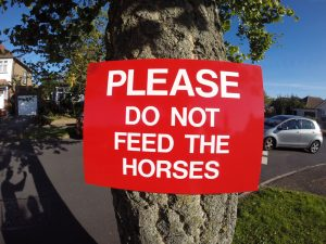 PLEASE DO NOT FEED THE HORSES, Sign